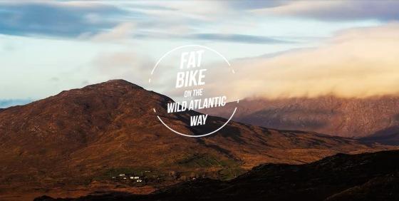 Fat Bikes Picture